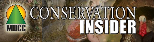 header_insider_2011 9